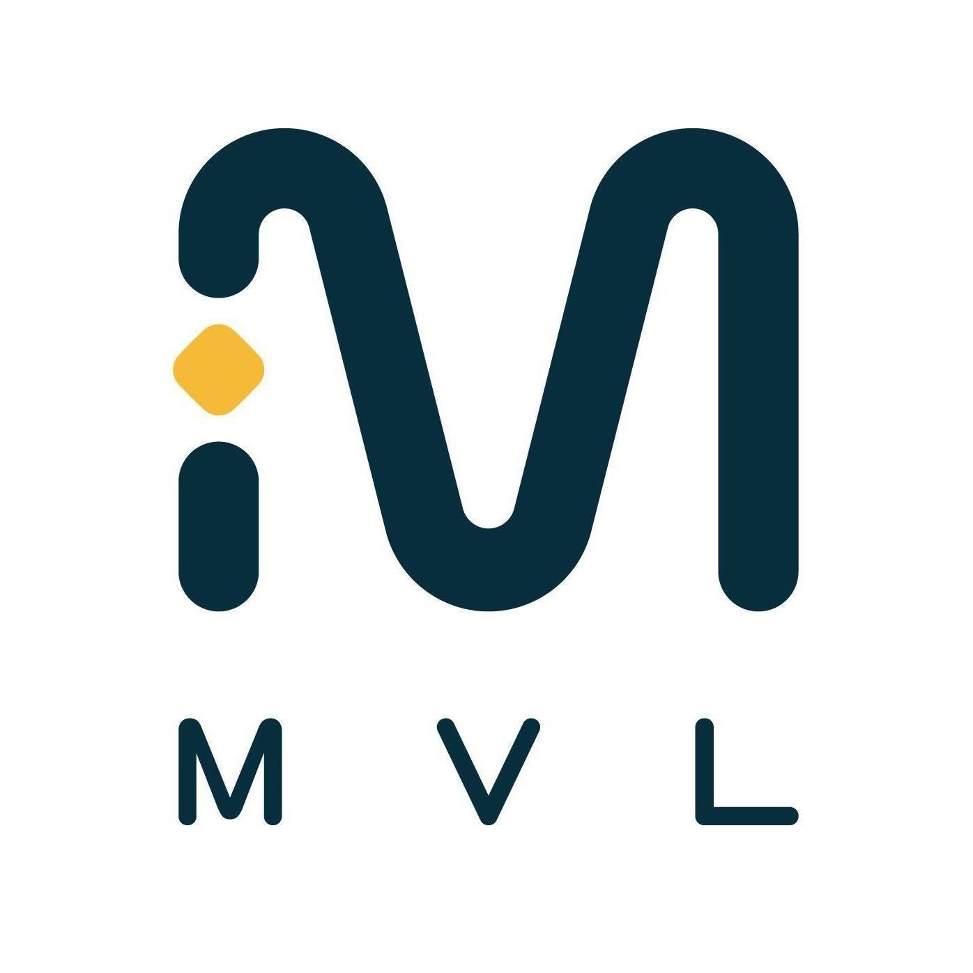 Mass Vehicle Ledger